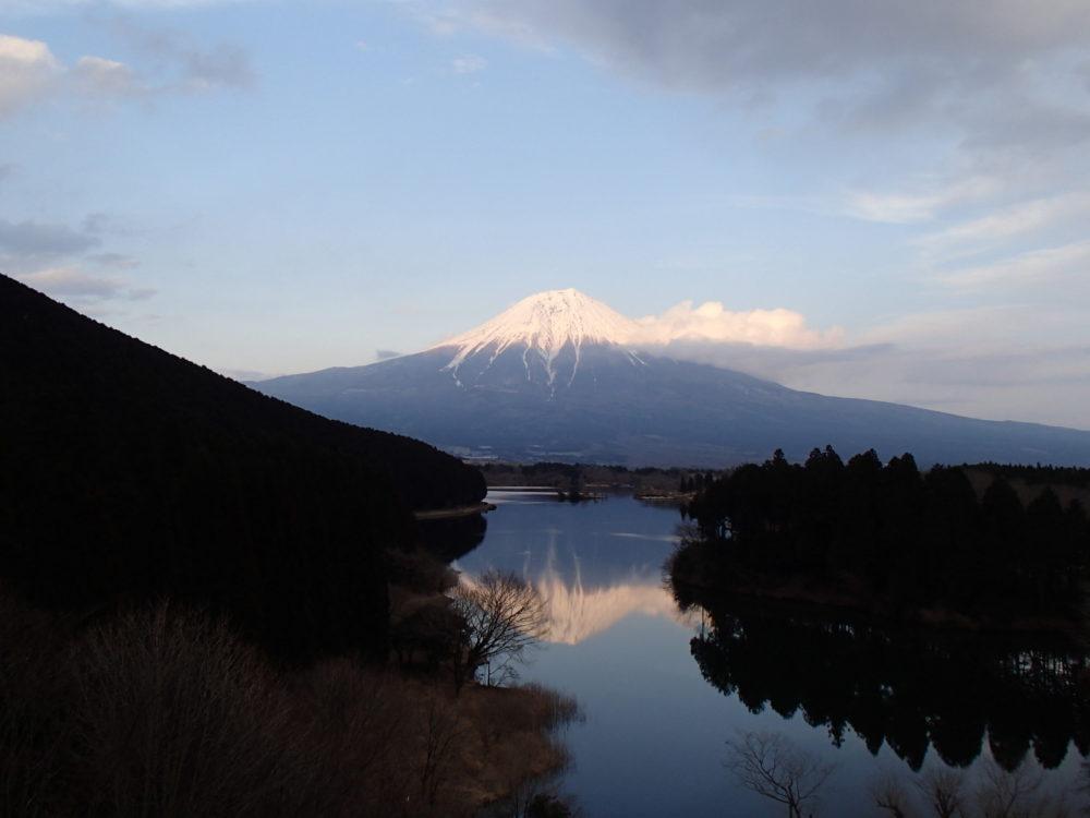 3/22(水)~3/24(金) 富士山麓ウォーク 第一回 田貫湖~朝霧高原