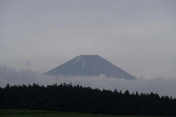 6/26(月)~6/28(水) ゆっくり周遊 富士山麓トレイル 6月 割石峠~青木ケ原